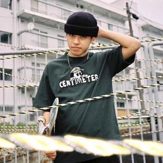 carhartt - centimeter ghost ruler tee (アイビーグリーン)
