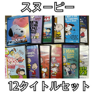 PEANUTS - SNOOPY スヌーピー DVD 12タイトルセット(未開封品含む)