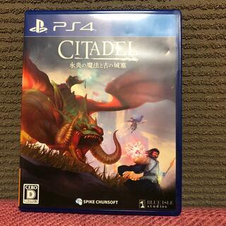 シタデル:永炎の魔法と古の城塞 PS4