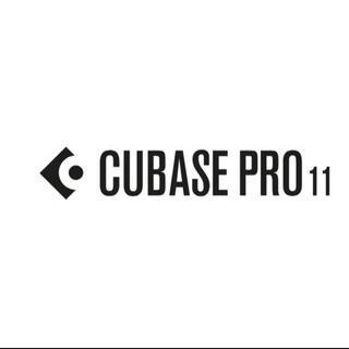 cubase pro 11 USBキー 最新版 最上位版(DAWソフトウェア)