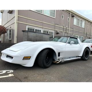 Chevrolet - ⭐︎超激レア⭐︎ シボレー コルベット 超本格レース仕様 C3 スティングレー