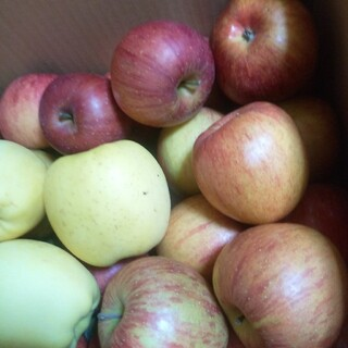 岩手県産 ご家庭用 りんご詰合せ 箱込み8kgから9kg(フルーツ)