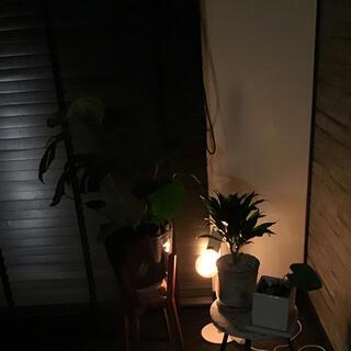 Francfranc - 定価25920円 新品 照明ランプ オシャレ