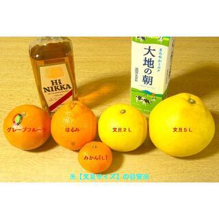 mimiさん おまけ1キロは無しで、文旦1キロ・小夏0.5キロ 2千円(フルーツ)