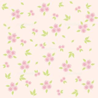 ムジルシリョウヒン(MUJI (無印良品))のnonshop5136 1(化粧水/ローション)