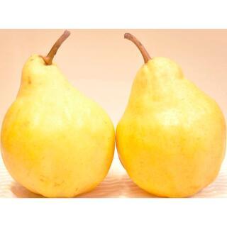 新味!ジャムの概念破壊!🥬ベジフルートスィルトジャム🍇(野菜と果物ソース)(フルーツ)