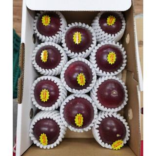 沖縄産パッションフルーツ(百香果)9〜12個入り 約1kg(フルーツ)