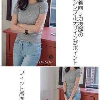 リブニット 半袖 ニット プチハイネック(ニット/セーター)