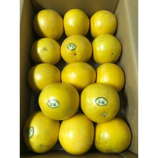 グレープフルーツ ゴールデンクラウン王冠14個(フルーツ)