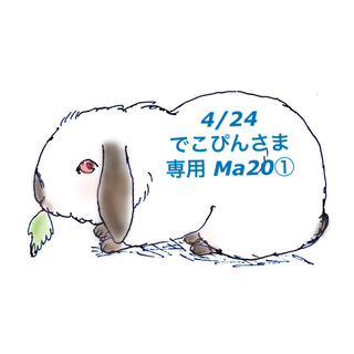 MAQuillAGE - *リニューアル新発売*マキアージュドラマティックパウダリーEX