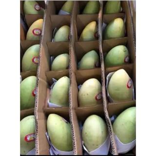 フィリピンマンゴー 20-24玉 約5kg/ケース(フルーツ)