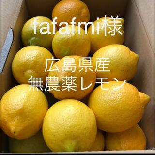 広島県産 無農薬 レモン 2.5kg fafami様 専用(フルーツ)