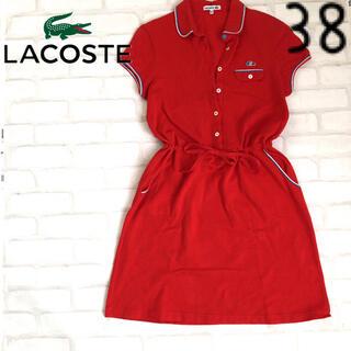 ラコステ(LACOSTE)のラコステ 38 ポロワンピ ポロシャツ ワンピース トリコロール ゴルフ赤レッド(ひざ丈ワンピース)