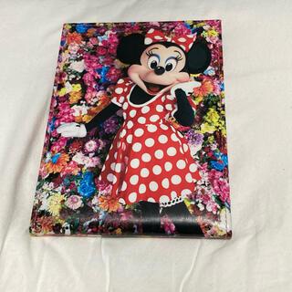 Disney - ディズニーランド ミニーマウス 蜷川実花 ミラー
