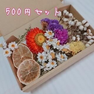 500円 ドライフラワー  花材セット スワッグ  ナンキンハゼ  花かんざし(ドライフラワー)
