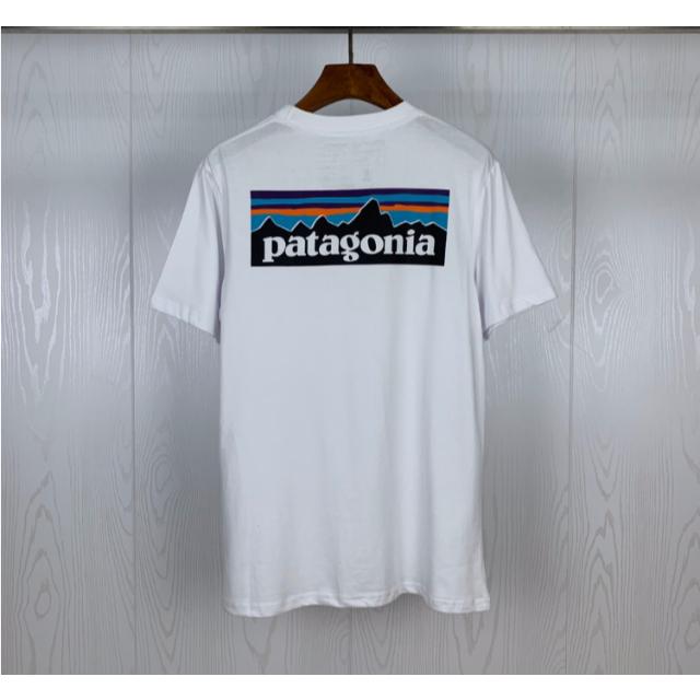 patagonia(パタゴニア)の【新品】Patagonia Tシャツ Lサイズ ホワイト メンズのトップス(Tシャツ/カットソー(半袖/袖なし))の商品写真