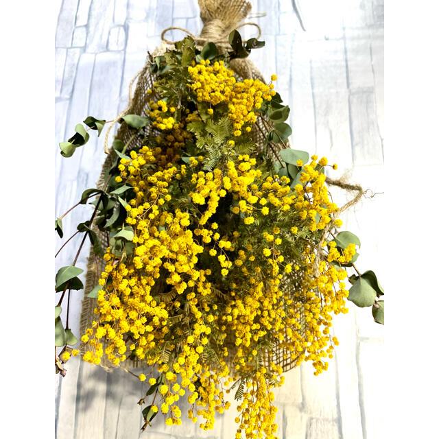 ミモザ スワッグ ハンドメイドのフラワー/ガーデン(ドライフラワー)の商品写真