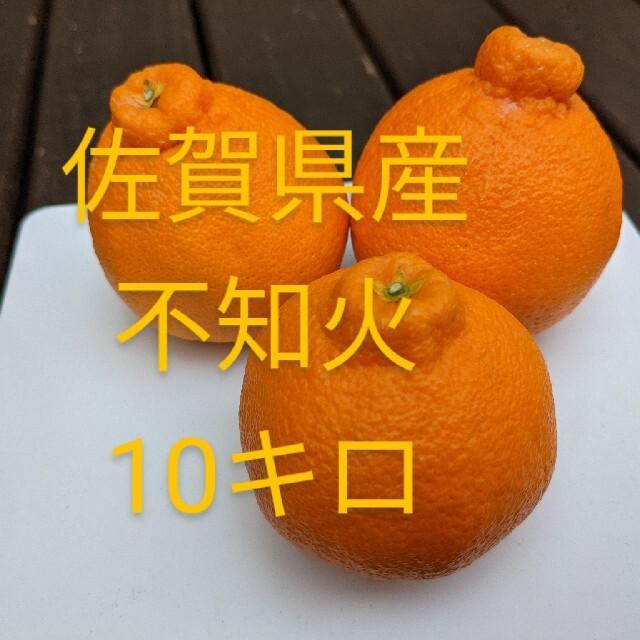 不知火10キロ 食品/飲料/酒の食品(フルーツ)の商品写真