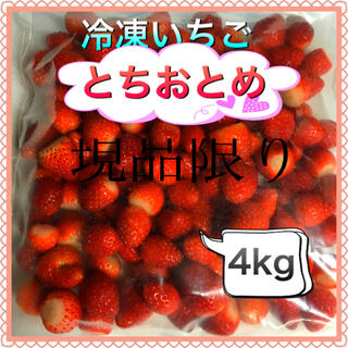 冷凍とちおとめ 4kg 現品限り特別価格 唄い屋LOVE様専用(フルーツ)