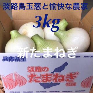 淡路島 新玉ねぎ 3kg 新たまねぎ 新玉葱
