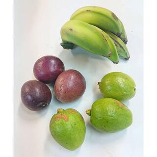 沖縄産人気のフルーツセット!アップルバナナ、パッション、フルーツグァバセット!(フルーツ)