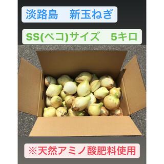 淡路島 新たまねぎ 極早生 5〜6キロ (秀品)SSサイズ ☆ 天然アミノ酸肥料