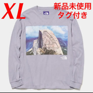 THE NORTH FACE - PALACE L/S Graphic Tee NORTH FACE ノース XL