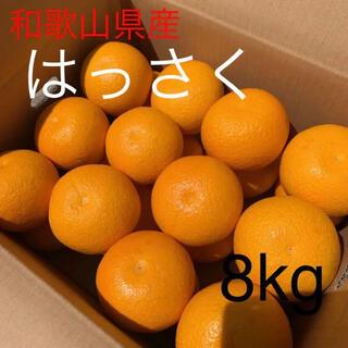 和歌山県 はっさく 八朔 8kg(フルーツ)