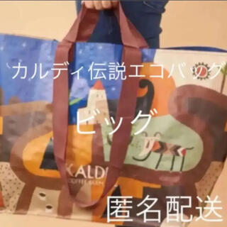 KALDI  エコバッグ ビッグ   新品未使用(エコバッグ)