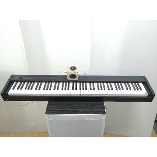 コルグ(KORG)の電子ピアノ デジタルピアノ コルグ KORG ステージピアノ 自動演奏 D1 (電子ピアノ)