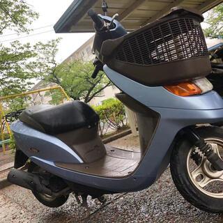 ホンダ - HONDA ディオチェスタ 原付 50cc
