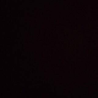バルマン(BALMAIN)の専用ページ(Tシャツ/カットソー(七分/長袖))
