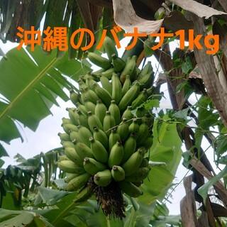 沖縄の黄輝バナナ バラバラ 1kg (フルーツ)
