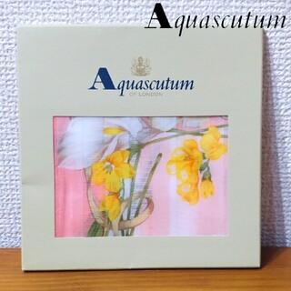 アクアスキュータム(AQUA SCUTUM)の新品 アクアスキュータム コットン ハンカチ 花柄 大判ハンカチ イギリス(ハンカチ)
