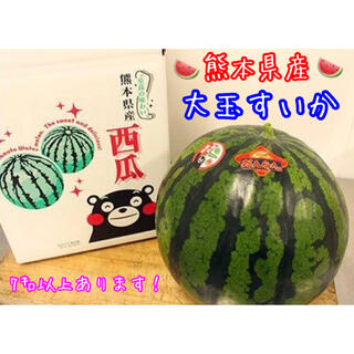 熊本県産 大玉すいか 1玉入 7㌔以上(フルーツ)