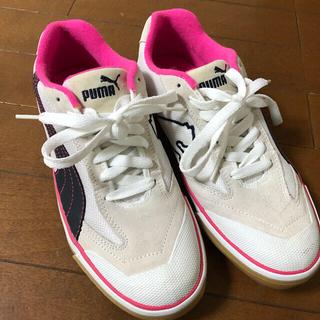 プーマ(PUMA)のPUMA FUTSARA 靴(その他)
