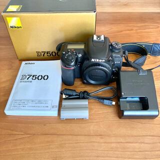 Nikon - Nikon D7500ボディ