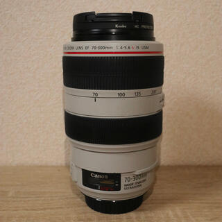 Canon - Canon EF70-300mm F4-5.6L IS USM