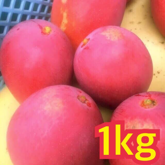 宮崎県産 完熟マンゴー 自家用 1~1.3kg 食品/飲料/酒の食品(フルーツ)の商品写真