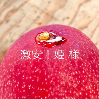 宮崎県産 完熟マンゴー 自家用 1~1.3kg
