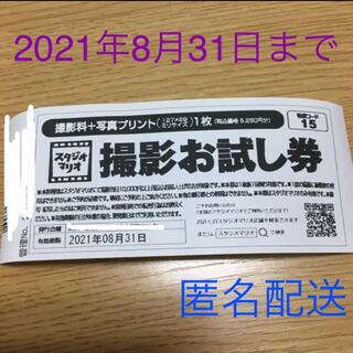 キタムラ(Kitamura)のカメラのキタムラ スタジオマリオ 撮影お試し券 5280円分(ショッピング)
