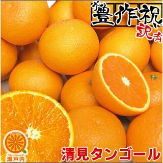 (送料無料) 愛媛産 清見タンゴール(清見オレンジ) 10kg 訳あり(フルーツ)