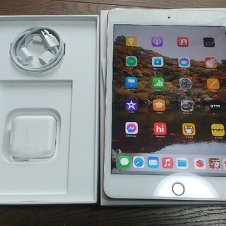 Apple - 価格交渉可 iPad mini 5 256GB Wi-Fiモデル ゴールド