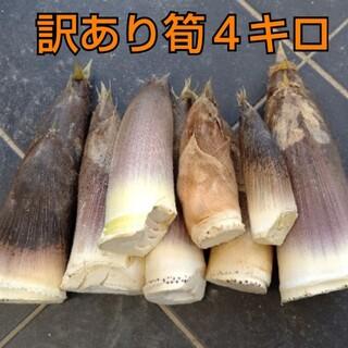 訳あり  傷あり  タケノコ  筍  たけのこ  竹の子 無農薬  野菜