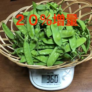 和歌山県産 きぬさやえんどう(野菜)