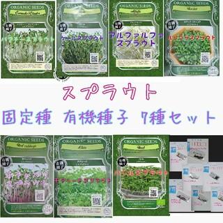 スプラウト 固定種 7種 セット 家庭菜園 野菜の種 ハーブの種 水耕栽培(野菜)
