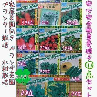 安心安全無農薬種子セット 野菜の種 種子 種 家庭菜園 プランター ハーブ (野菜)
