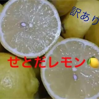 せとだレモン 箱込み10キロ   訳あり(フルーツ)