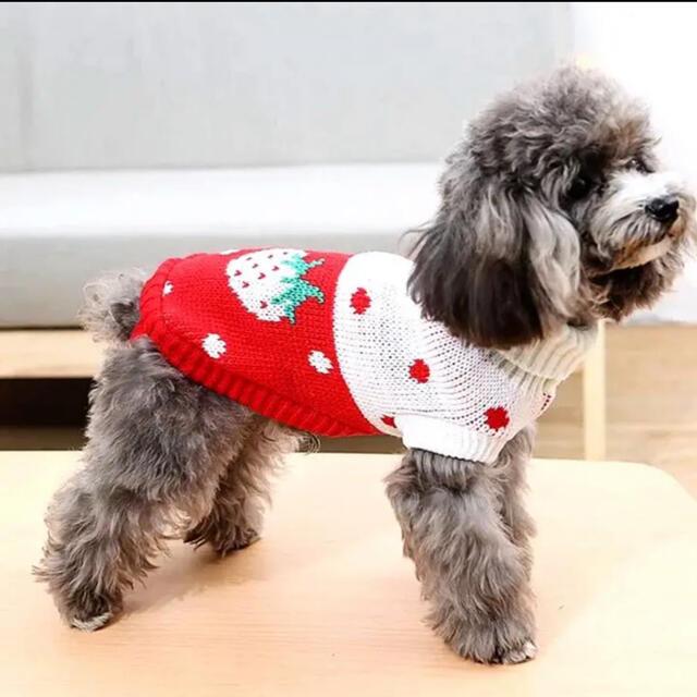 犬服 猫服 ペット服 超小型 パピー犬 レッドストロベリーセータ:3XS その他のペット用品(犬)の商品写真