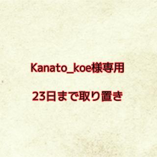 Nintendo Switch - Kanato_koe様専用